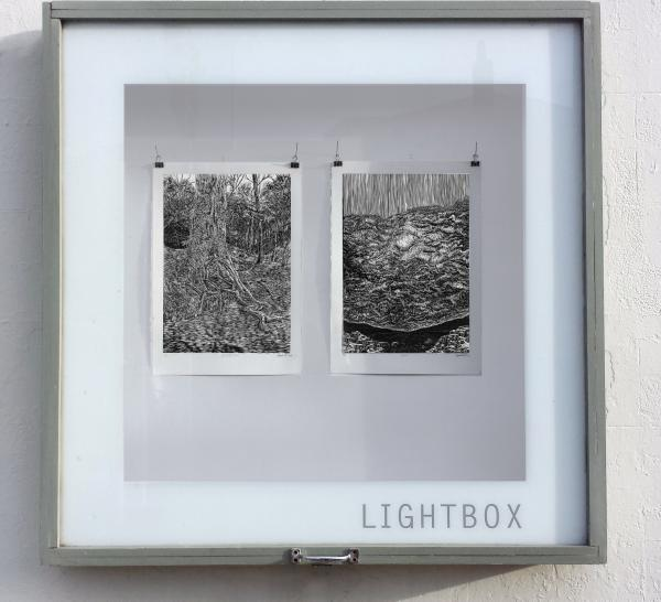 Anna Lundh - woodblocks in lightbox